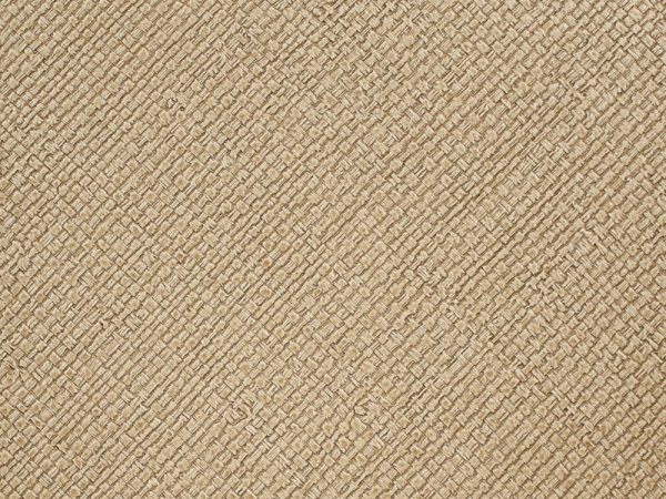 Roysons Wallcovering Behati_7995_Hemp