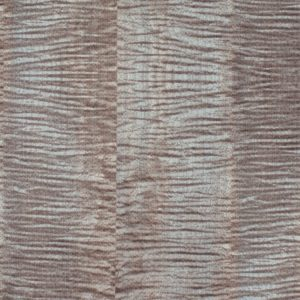 Roysons Wallcovering Tiger Maple_8151_Orchard